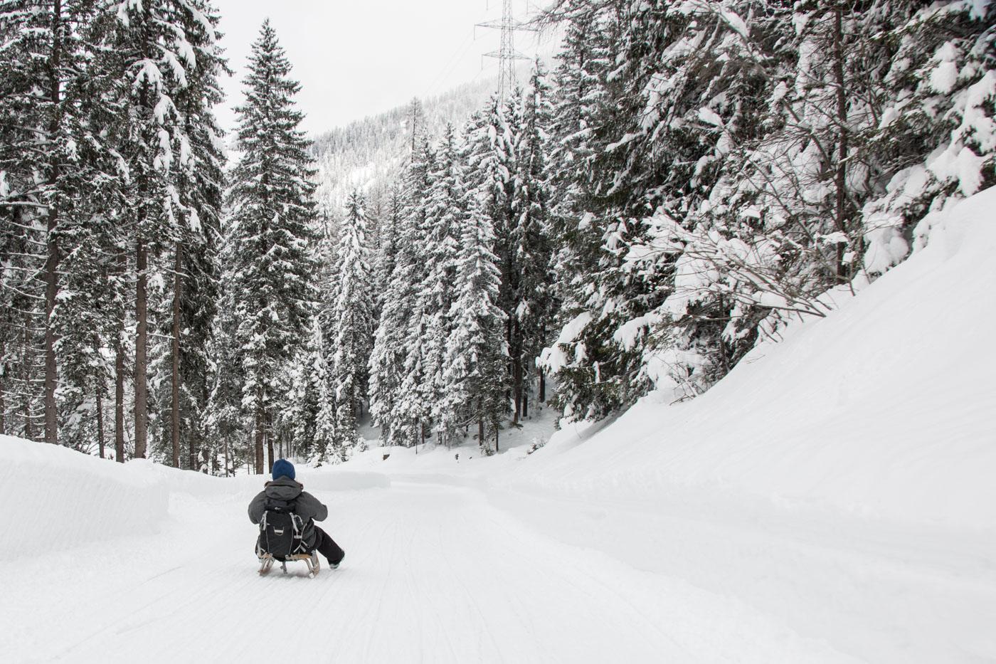 Ausflug, Bergün, Cultura, Culture, Graubünden, Kultur, Reisen, Schlitteln, Schlittenfahren, Schweiz, Sport / Freizeit / Unternehmungen, Wintersport